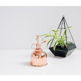 Pulverizador para plantas de interior