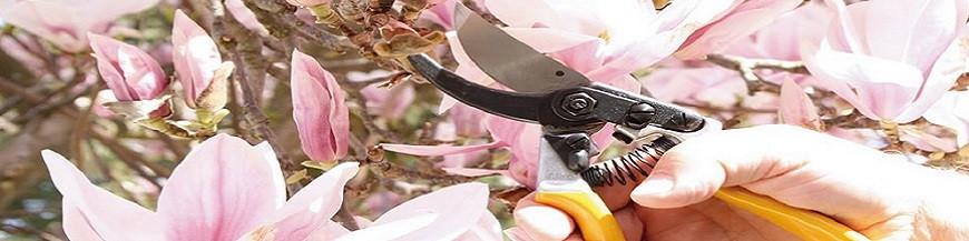 Herramientas para cortar y podar