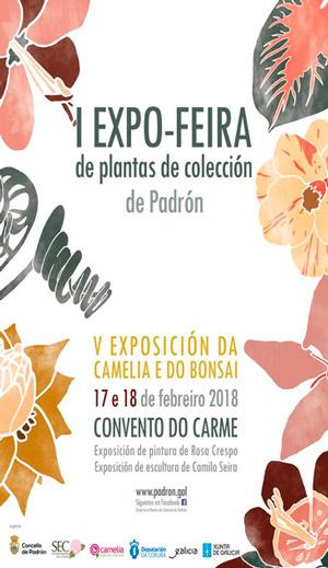 I Feria de Padrón